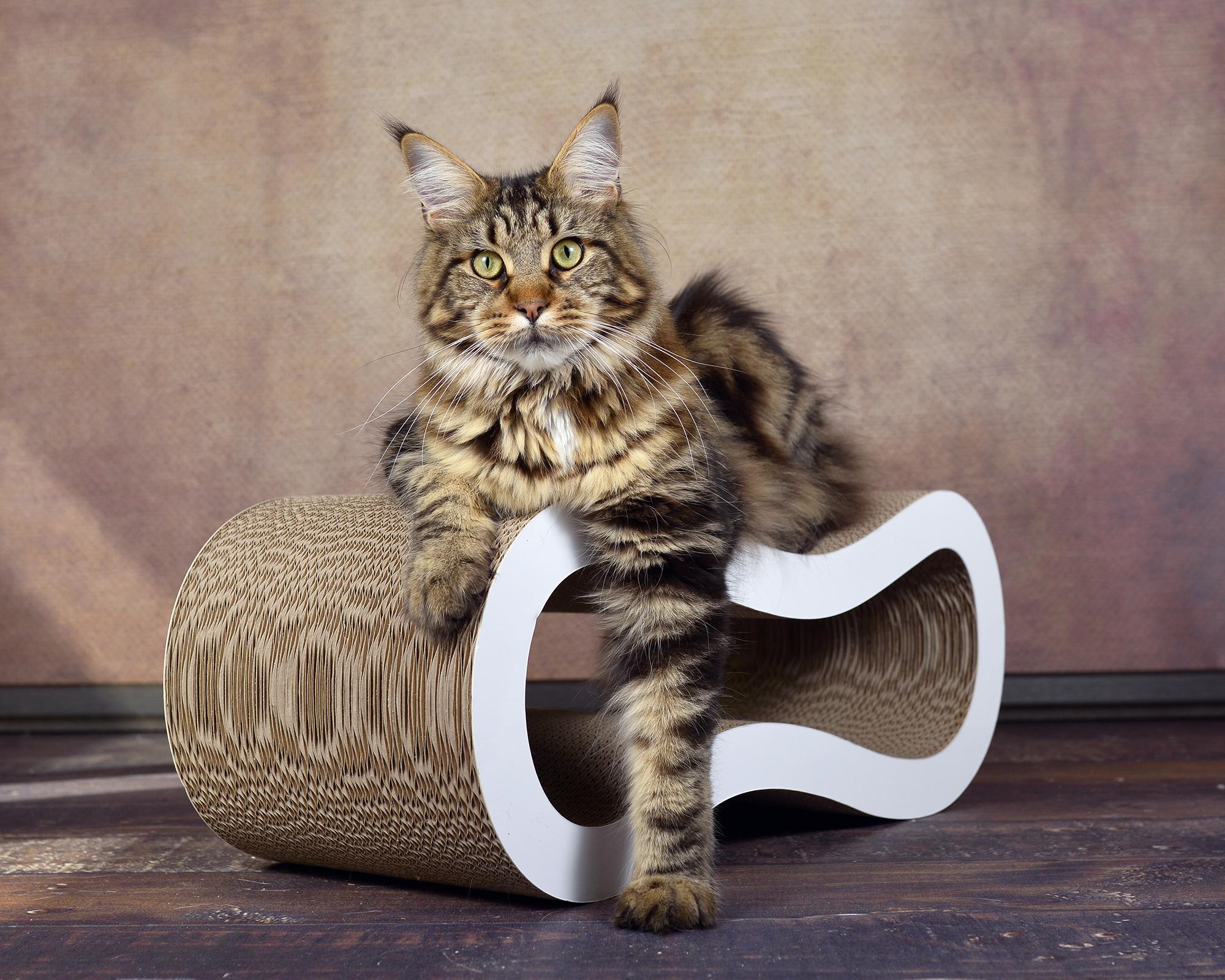 Kratzmöbel für Katzen Singha Medium, Kratzpappe, Kratzbrett aus Wellpappe